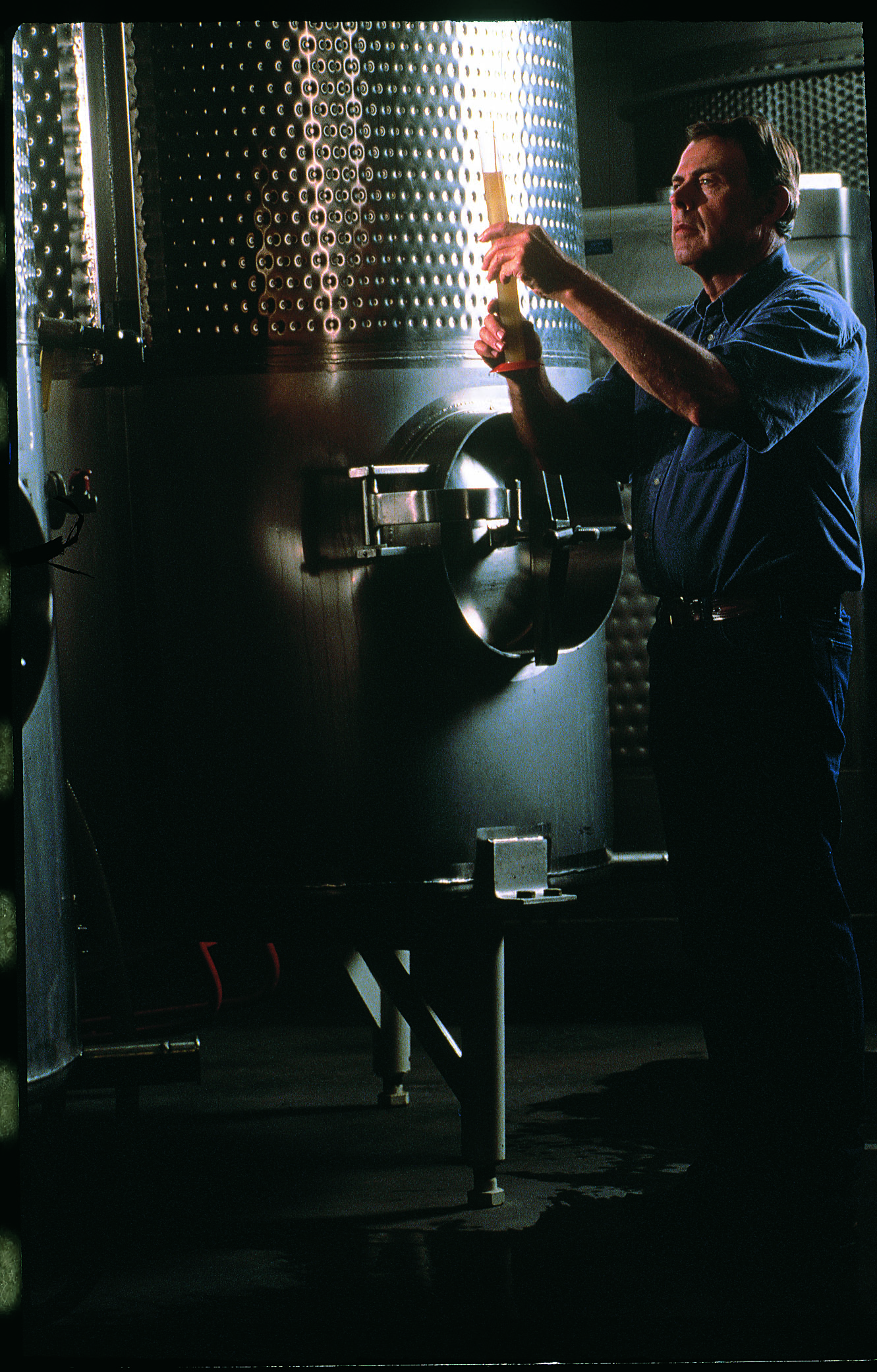 """""""A History of the Palisade Wine Industry,"""" Spring 1996"""