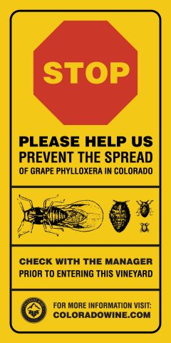 Phylloxera Bulletin for the Colorado Wine Industry, April 2017